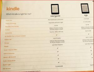 Kindle DSE